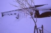 Island 2008 Winter 024