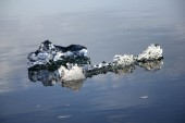 Island 2012 016