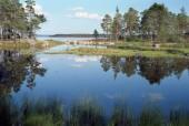 Schweden 1994 022