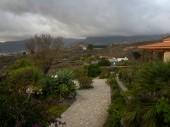 La Palma 2009 026