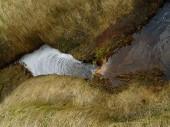 Island 2008 Sommer 028