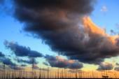 Mallorca 2012 022
