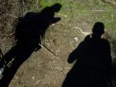 La Gomera 2008 010