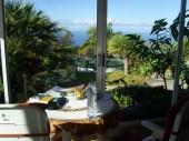 La Palma 2009 029