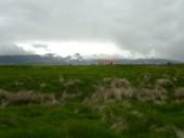 Island 2008 Sommer 004